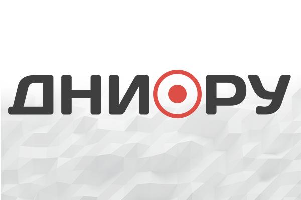 Москвичей предупредили о грозе и ливне